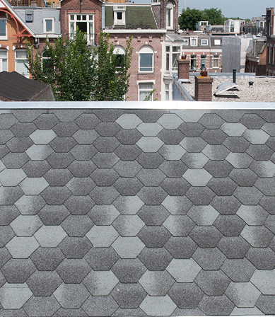 Shingles monumentaal pand Amsterdam
