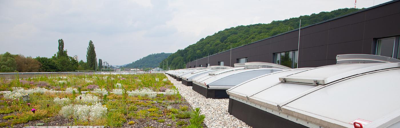 Daktoebehoren voor alle soorten daken | Dakbedekking & dakmaterialen | Royal Roofing Materials